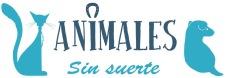ANIMALES SIN SUERTE GATO Perro