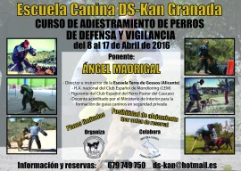 defensa-y-vigilancia_2016